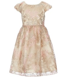 Rare Editions Gold/ Taupe Embroidered Mesh Cap-Sleeve Beaded Waist Dress