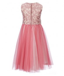 Rare Editions Pink Embroidered Mesh Jewelled Waist Dress
