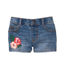 Crazy 8 Denim Blue Embroidered Denim Shorts