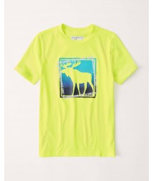 Abercrombie Neon Yellow Print Logo Tee Big Boy