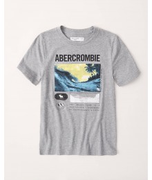 Abercrombie Grey Tropical Tee