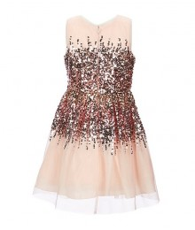 Poppies And Roses Pink/Blush Ombre Glitter Accented Fit & Flare Dress