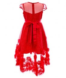Rare Editions Red Illusion Glitter Mesh Soutache High Low Dress