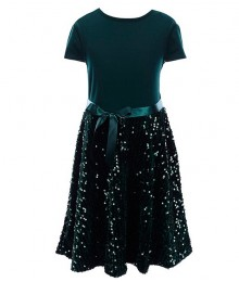 Xtraordinary Green Velvet Sequin Fit And Flare Dress