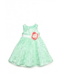 nanette green pleated wt pink rose lace dress Little Girl