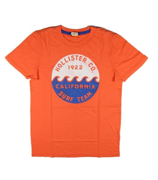 Hollister Orange Boys Tees-  California Surf Team