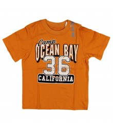 Childrens Place Boys Camp Ocean Bay Graphic -Mustard Tee