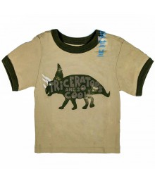 Childrens Place Boys Dino Graphic Graphic -Tan Tee