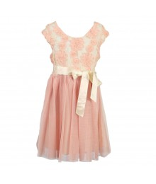 Pink And Violet Lace Soutache Dress Wt Net Skirt Dress Little Girl