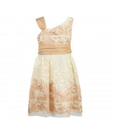 Rare Editions Gold/Champagne Mesh One Arm Soutache Dress
